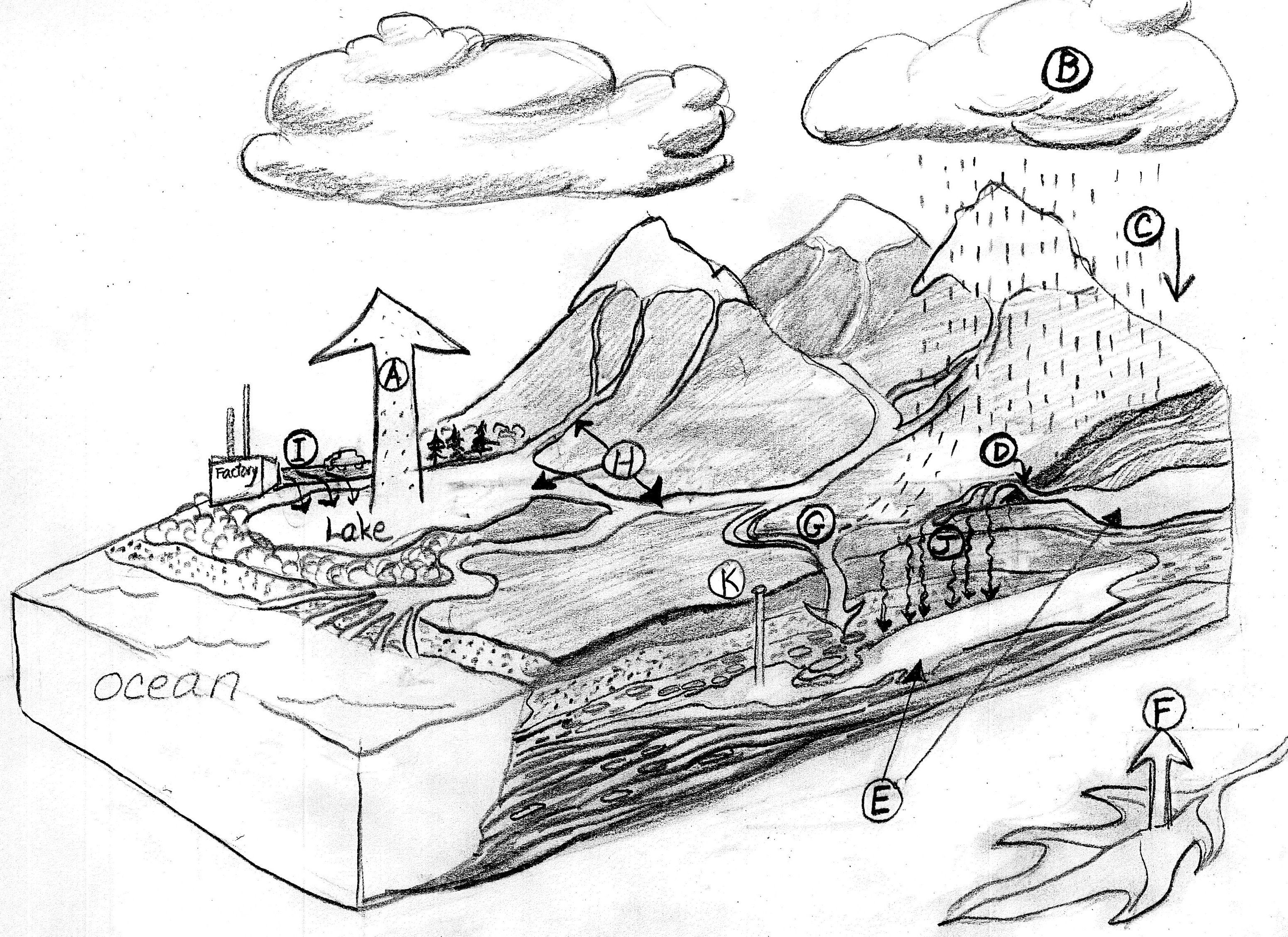 Uncategorized Water Cycle Diagram Worksheet 100 water cycle diagram effects of human activity on blank worksheet sketch coloring page view larger image image
